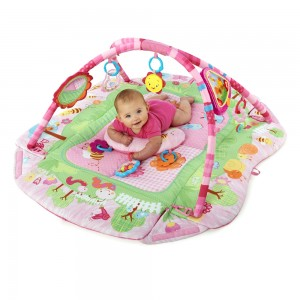 /7287-9501-thickbox/deka-na-hrani-5-v-1-garden-fun-baby-s-playplace-deluxe-edition.jpg